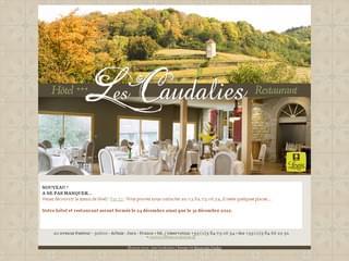 http://www.lescaudalies.fr est réalisé avec Cms Made Simple