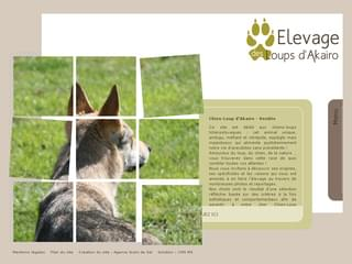 http://www.chien-loup-akairo.com/ est réalisé avec Cms Made Simple