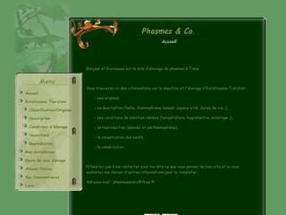 http://phasmesandco.free.fr/index.php est réalisé avec Cms Made Simple